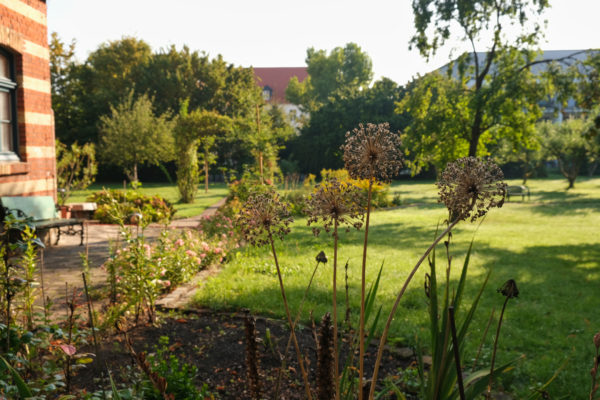 Vinzenzkolleg-Garten